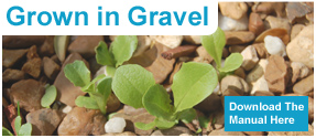 Grown in Gravel, Download the Manual Here