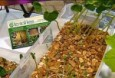 To Soil Less at the Washington Home and Garden Show