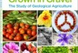 Grown in Gravel The Study of Geological Agriculture 2015 Edition